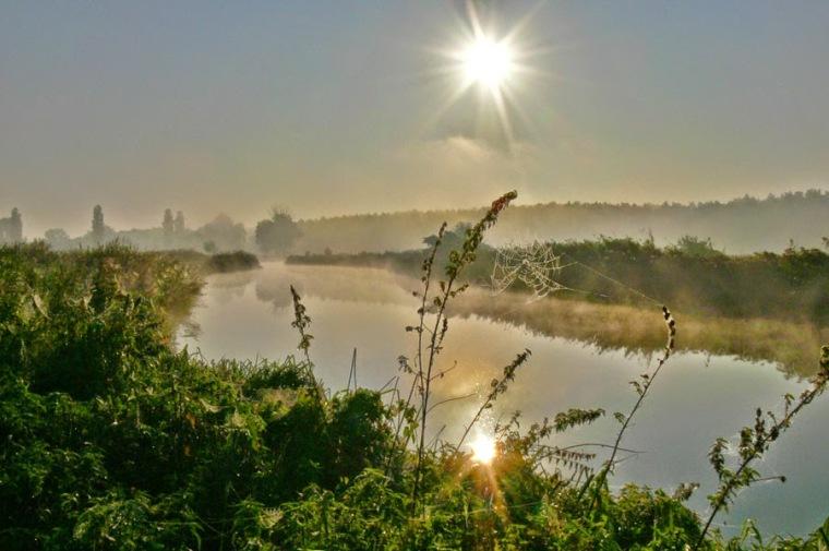Пойма реки Ирпень в наши дни. До подрыва плотины она была затоплена водой