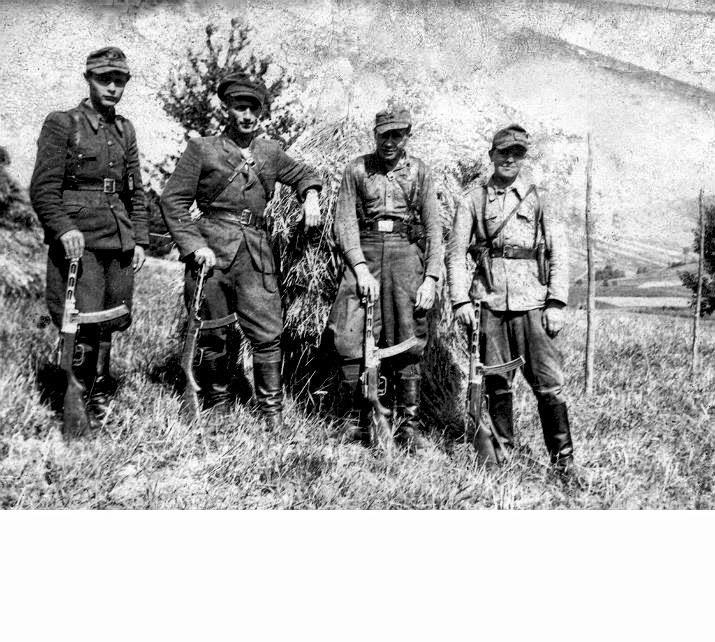 Группа украинских повстанцев, Закерзонье, 1946 год